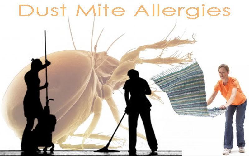 csak-az-allergiasok-kis-hanyada-tud-a-betegsegerol-12
