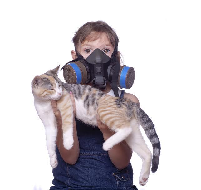 csak-az-allergiasok-kis-hanyada-tud-a-betegsegerol-3